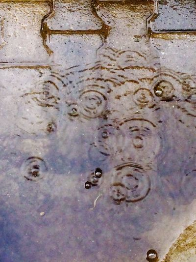 Water drops Full Frame No People Backgrounds Outdoors Close-up Day Nature Rain Rain Drops RainyDay Rainy Season Raining Rainy Days☔