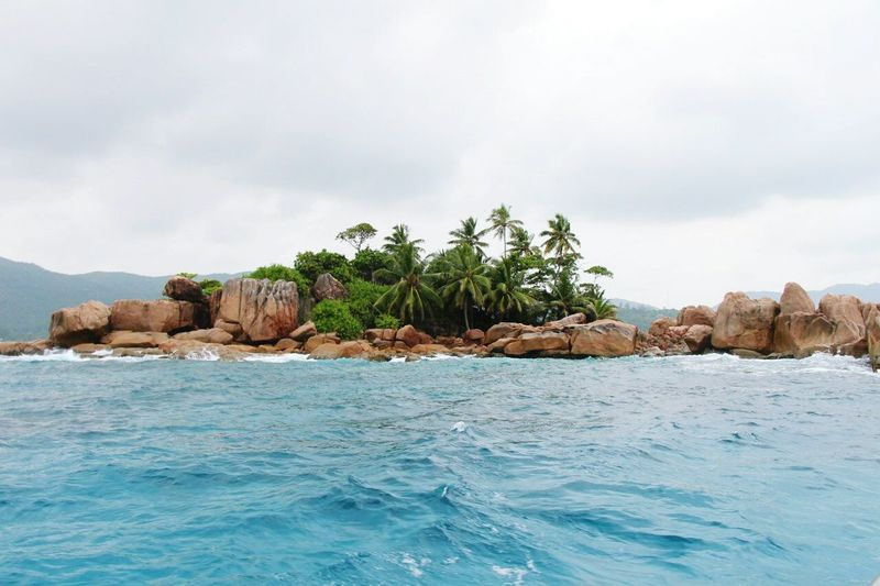 Rocks and palm trees by sea against sky