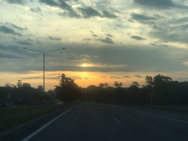 Sunset Sky Cloud - Sky Road Sunset Tree Transportation The Way Forward Nature No People Direction Diminishing Perspective Plant Beauty In Nature Scenics - Nature Tranquility Tranquil Scene Road Marking Marking Sign Street