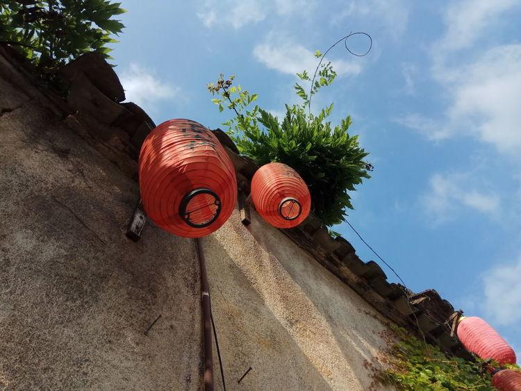 在安徽宏村 宏村里各处墙上都挂满了红灯笼 这种装饰效果到了晚上 灯笼被点亮之后 也是蛮有气氛的。