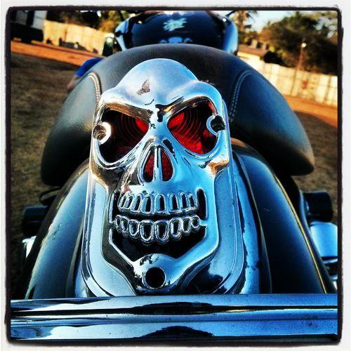 Harleydavidson Bike Bikers Ibwgoa Skeleton Awesome Performance Ride Riders