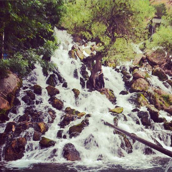 Erbil Kurdistan Bexal Bekhal Waterfall Mountain Trip Instakurdish Instakurd Instatrip Park Youmustbehere Hawler Irbil