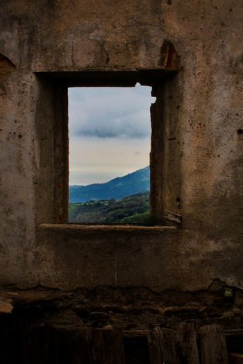 Una finestra sul verde 🍃🍂 Window Sky Cloud - Sky No People Indoors  Tree Abandoned Outdoors Tree Italygram Nature Nature Photography Desolation Calabria (Italy) Calabriadascoprire Igersitalia