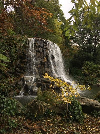 Ireland Waterfall Flowing Water Iveagh Gardens Scenics Beauty In Nature
