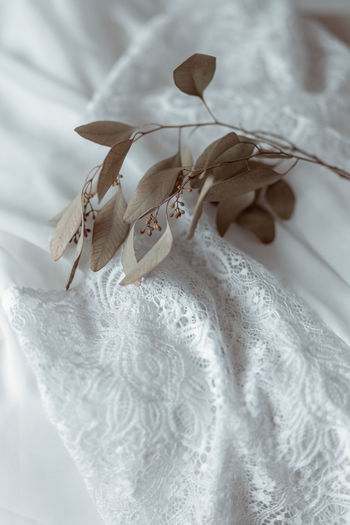 High angle view of white tied hanging on bed