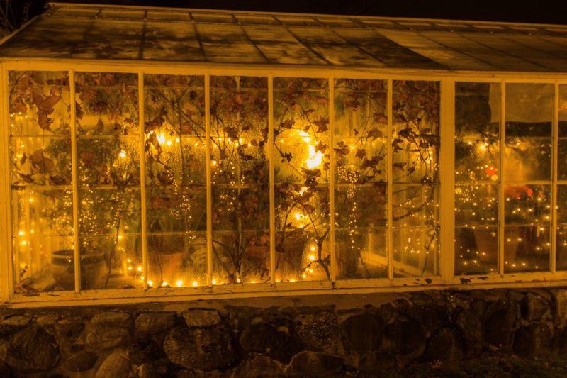 Greenhouse Night Illuminated Lighting Equipment No People Decoration Glowing Architecture