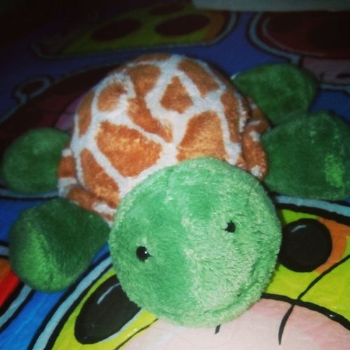 Meet PAWI. Our beloved friend. :) Nakakagood vibes po siya, promise! TortoiseorTurtle Friend Stufftoy Cute