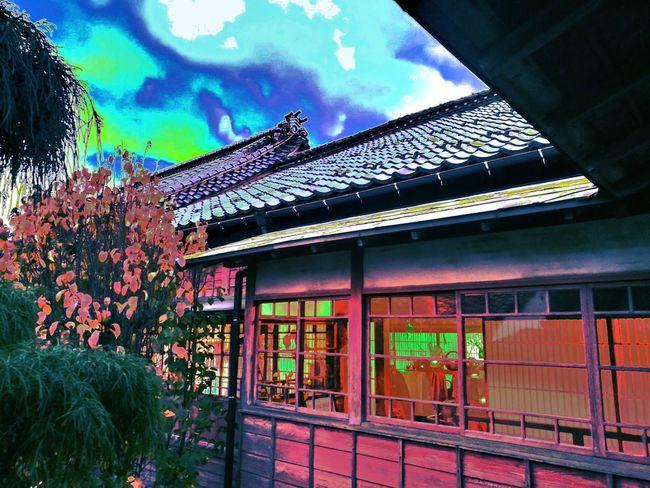 べんがらもみじ Japanese Traditional Japan Japanese Architecture Geisha Autumn Autumn Leaves Red Watercolor Watercolor Painting SAKATA Built Structure