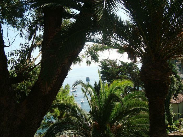 Taormina Beautiful Nature NoEffects  Fantastic Mediterranean Island Sicily Ilovemycountry 😍😍😍