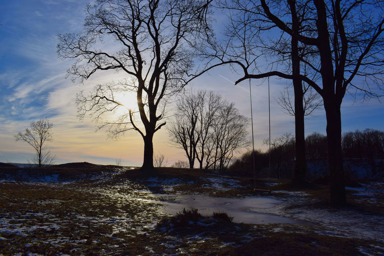 Tree Sunset Nature Sky Outdoors No People Branch Bare Tree Beauty In Nature BestEyeemShots EyeEm Gallery EyeEmNewHere Lithuania Ukmerge Hillfort EyeEm Best Shots - Nature EyeEm Nature Lover Swing Throwback ✌ Winter Landscape Winter Sky Winter Sun Long Goodbye The Secret Spaces