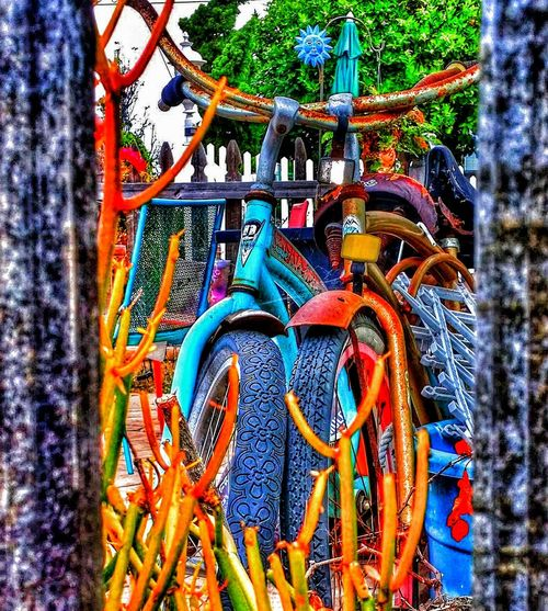 Home Is Where The Art Is splash of color neighbors bikes Special Effects For The Love Of Photography Fine Art Photography Enjoy The Little Things Save A Life Adopt Bike Beach Cruiser Cruiser Bikes Enjoying Life Life Is A Journey