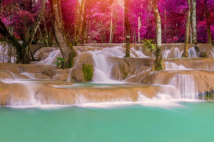 Water Waterfall Scenics - Nature Beauty In Nature Motion Nature Long Exposure No People Flowing Water Tree Plant Travel Destinations Splashing Fountain Waterfront Blurred Motion Flowing Day Outdoors Power In Nature Falling Water Running Water