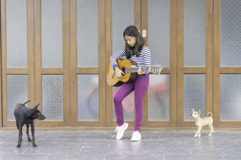 Full length of girl playing guitar while standing with dogs against wall