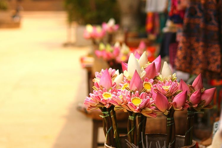 Close-Up Of Lotus Water Lilies For Sale In Market