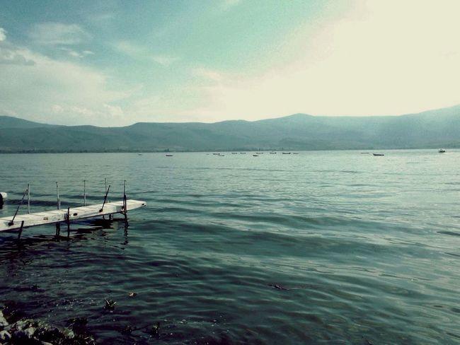 Lake Green Water Bridges Chapala Lake