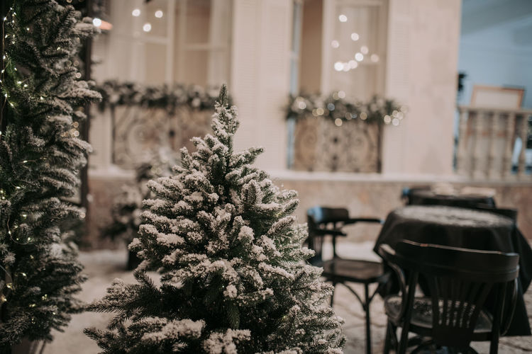 Christmas tree on table