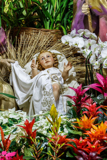 Madeira Island Baby Jesus Beauty In Nature Bouquet Crib Crib Figurine Day Florist Flower Flower Head Fragility Freshness Growth Human Representation Nature One Person Outdoors Plant Real People Religion Sculpture Smiling Spirituality Statue
