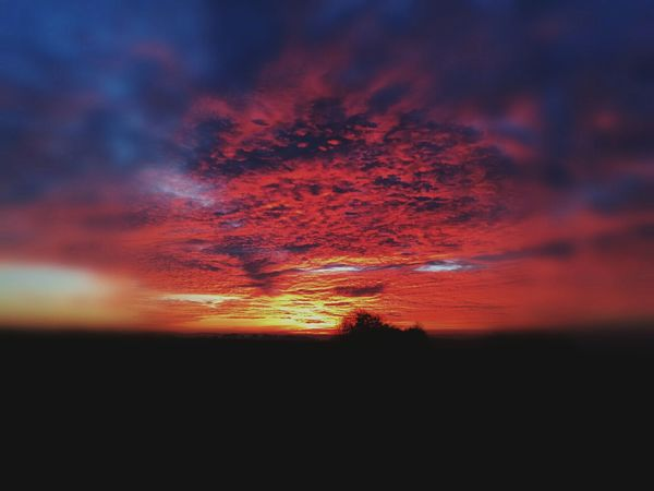 Sunset Nature Cloud - Sky Outdoors Beauty In Nature Huawei Mate 8 Dramatic Sky Handy Foto