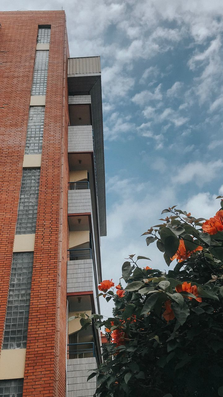 built structure, architecture, building exterior, low angle view, building, cloud - sky, plant, sky, nature, no people, day, residential district, growth, window, tree, flower, outdoors, flowering plant, city, orange color, orange