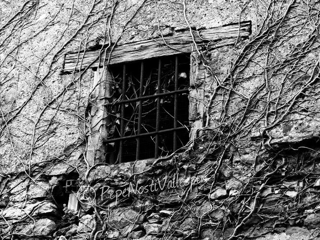 Window Black And White Photography Built Structure Architecture Street Photography Black&white Outdoor Photography Poladesiero Pola De Siero Blancoynegro Black And White Blackandwhite Blackandwhitephotography Blackandwhite Photography Streetphotography Streetphoto Abandoned Abandonedasturias Abandoned Buildings Architecture