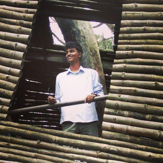 Treehouse Nandi Wastedpicoftheday