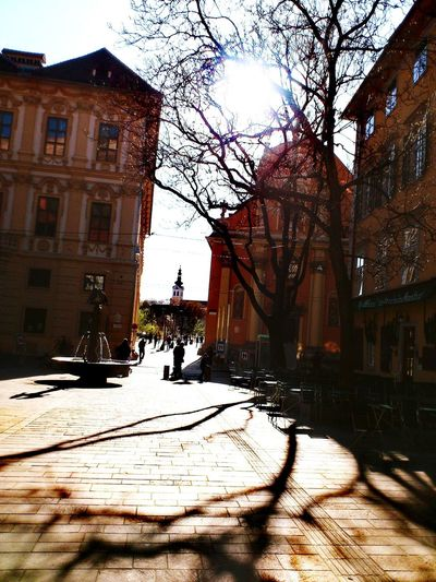 Building Exterior Built Structure Architecture Snow Winter Cold Temperature Tree City Outdoors Sky Day Nature No People Focus On Shadow Shadow-art Architectural Design Graz Shadow Architecturephotography Architecture_collection Shadows And Silhouettes Shadows And Backlighting Travel Destinations City History