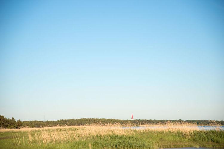 Baltic Sea Winter Blue Clear Sky Day Estonia Field Grass Grassy Horizon Over Land Idyllic Landscape Nature No People Non Urban Scene Non-urban Scene Outdoors Plant Remote Rural Scene Sea Seashore Sky