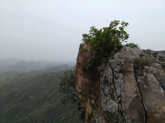 Beauty In Nature Day Landscape Nature No People Outdoors Rock Rock Formation Sky Tirupati Tranquility Tree