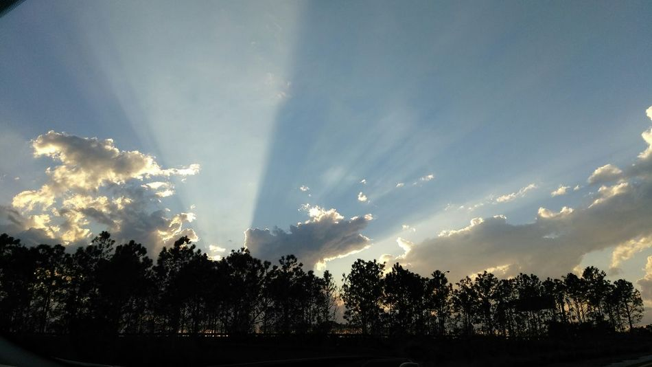 Sky Sunbeam Outdoors Nature No People Sunset Behind Trees Tree Line Tree Lined Street Sunset Sunset Silhouettes Sunset And Clouds  Clouds Clouds And Sky Clouds And Sky Colors Cloudlovers Clouds And Sunset  Sunsetphotographs Sunset Collection Natural Beauty Sun Beam From Cloud Sun Beaming Beams Of Light Beautiful Beautiful Nature Florida Sunset