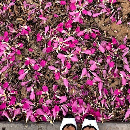 Pink-kind of spring here