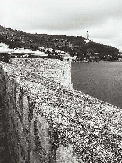Tbt. Galeb Dubrovnik