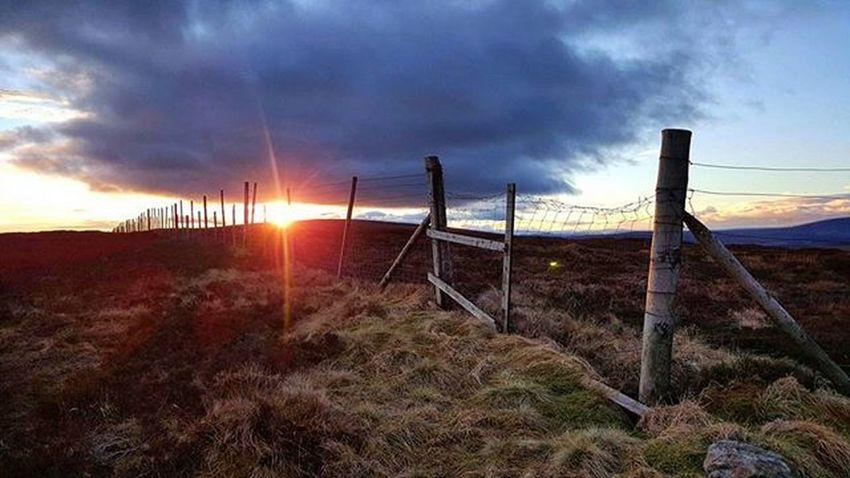 Winter Jewel - Beautiful light at the summit of the Cairn. Sunset Sun Jewel Lastlight Fence Rustic Highlight Bluetones Rustic Beautiful Cairnomount Aberdeenshire Fettercairn Banchory POTD Photooftheday Visitabdn VisitScotland Visitaberdeenshire Landscape