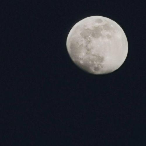 Luna Zoom X50
