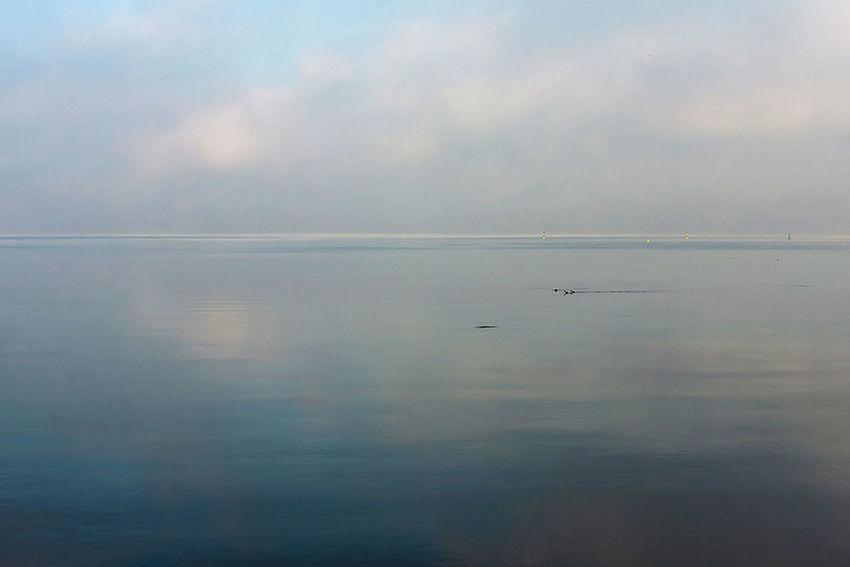 Silence and peace.... The Great Outdoors - 2016 EyeEm Awards Lago Di Garda PeschieraDelGarda Lago Lake Italy Italia