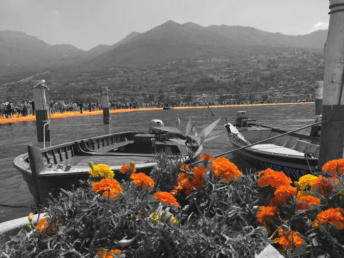 Summer2016 Memories Of Summer Ponte Galleggiante Ponte Di Christo Installation Art Orange ArtWork Iseo Lake Water Bridge Mountain Sky Walking On The Water Amazing Place Flowers Boats⛵️ People