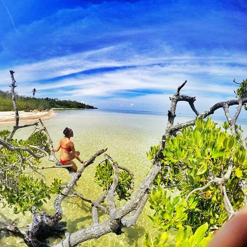Somewhere in Coron Philippines . @tid_c During her meditation ☺☝🌏🌍💓🌎🌊😍🏄🌞🙏🙏 tree mangrove sea sky blue crystalwater traveling enjoying life fruends happy fun lovemylife warrenjc vscogood instagood theglobewanderer lifeisridenow gopro girl