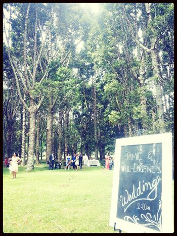 Attending A Wedding At The Park Nature