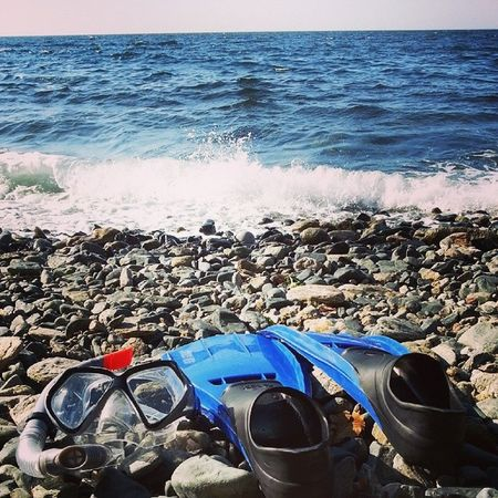 Palet Gozluk Deniz Summer