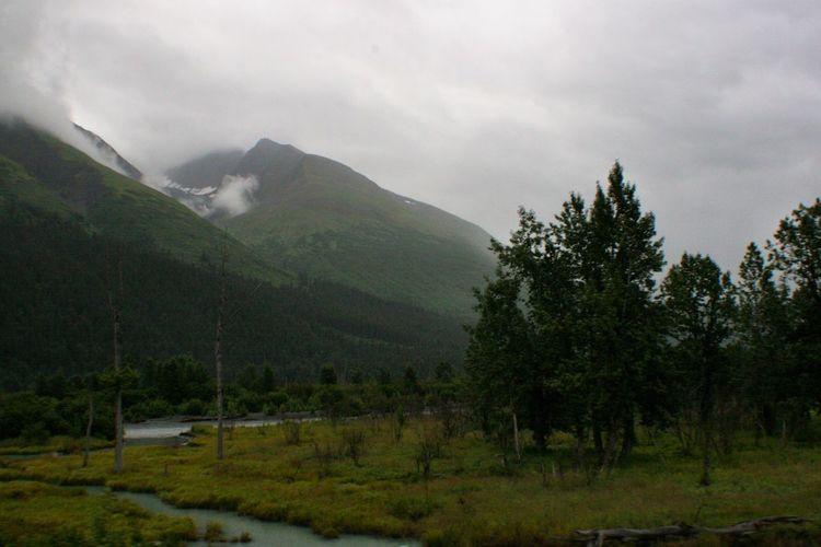 Verdant Grey Alaska Nature Stream Grey Day Mountain Valley Q Quag Quagmire Marshland  Landscapes With WhiteWall