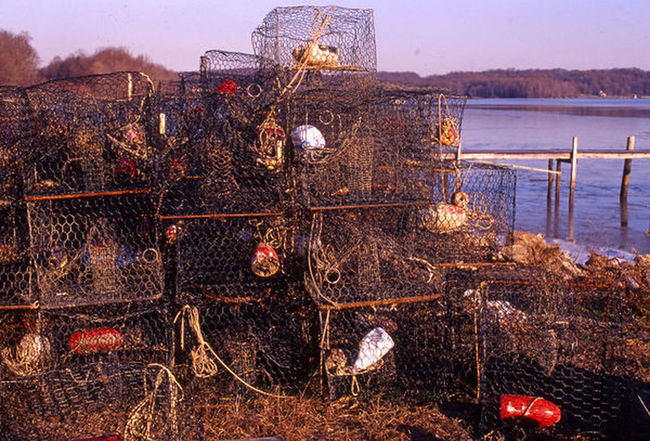 Crab Trap Day Dock Fishing Gear Nature No People Outdoors Rusty Sky Water Waterman