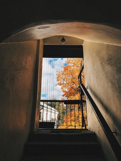 Built Structure Architecture Railing Window Steps Steps And Staircases Indoors  The Way Forward No People Day Building Exterior Low Angle View Sky Autumn Colors Autumn Vilnius Vilnius Old Town Lithuania Natural Light