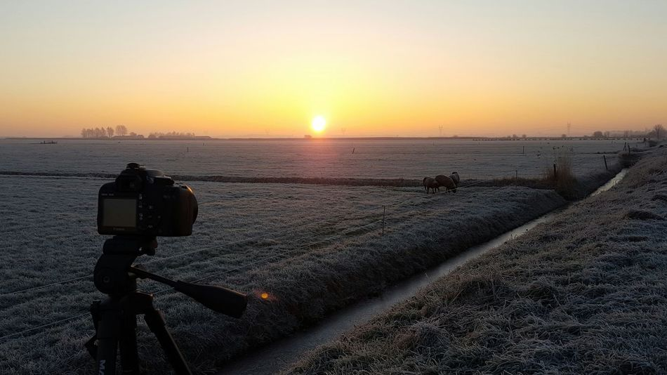 Camera - Photographic Equipment Digital Camera Beauty In Nature Nature Outdoors Scenics Sky Day Digital Single-lens Reflex Camera Winter Cold Temperature White Whitefrost Sunrise Sunriseporn Landscape Beauty In Nature No People Agriculture Tranquil Scene Rural Scene Nature