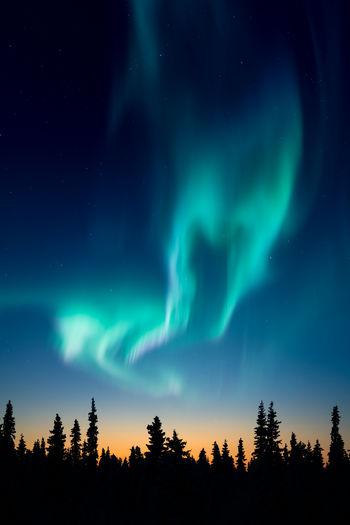 Low angle view of aurora borealis at sunset