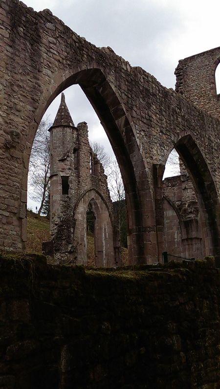 Abbey Black Forest Castle Deutschland Germany Ruine Schwarzwald Selva Negra