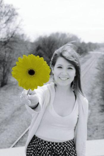 Photoshop Gretna GretnaNebraska Flower Yellow Flowers