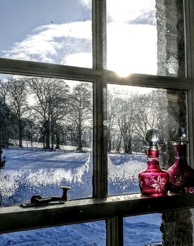 Cloud - Sky Winter Snow Cold Temperature
