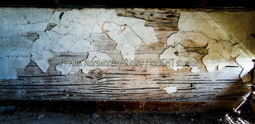 ©Ann Rigley 'Gondwana and Laurasia', All Rights Reserved LatheAndPlaster Attic Finds Barns RuralTreasures  IoLIGHTstudios  Barber's Farm