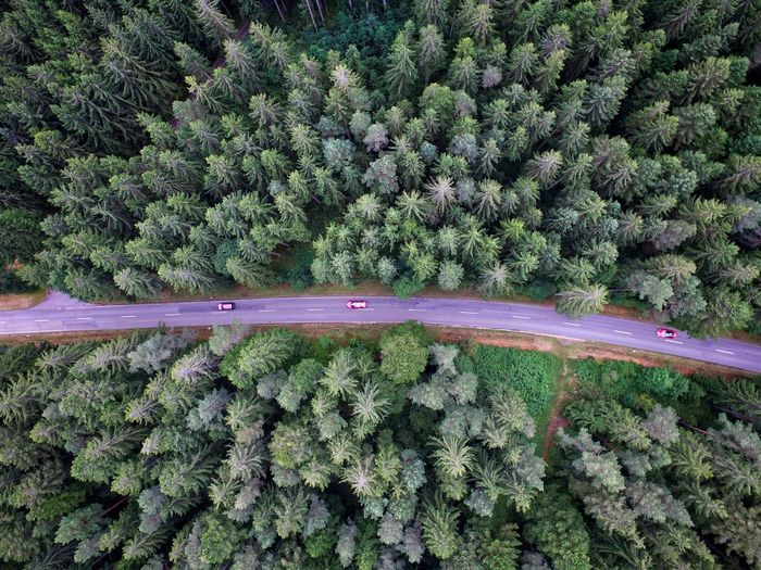 Cars Outdoors Drone  Dronephotography Drone Shot Nature Forest Drone View Tree Nature Street