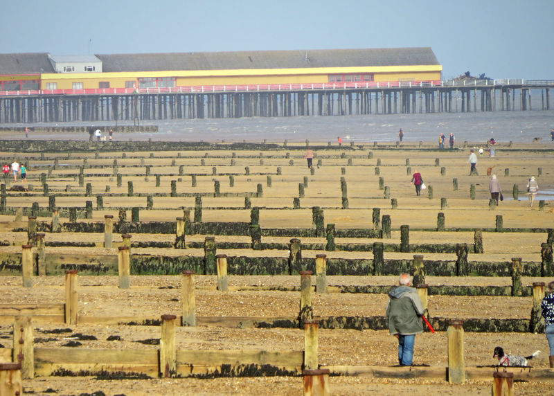 Architecture People Nature Real People Men Sky Day Field Standing Outdoors Agriculture Adult Breakwaters One Person Rural Scene One Man Only Leisure Activity Seaside Pier Sandy Beach. Frinton On Sea English Way Of Life Beach Tynes
