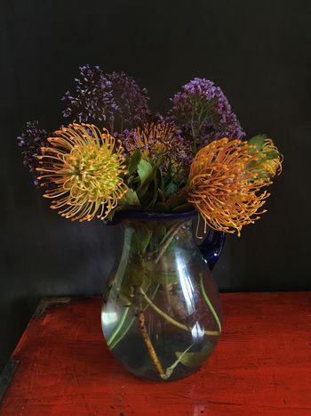 Protea flowers still-life arrangement The Week On EyeEm